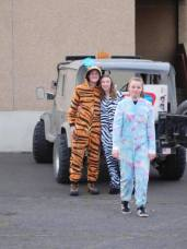 A unicorn, a tiger, and a zebra walk into a church parking lot...