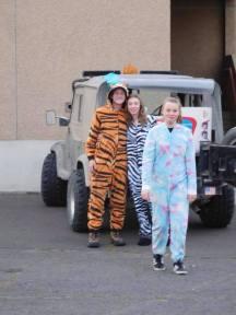 A unicorn, a tiger, and a zebra walk into a church parking lot...