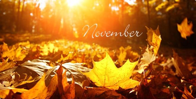 November16