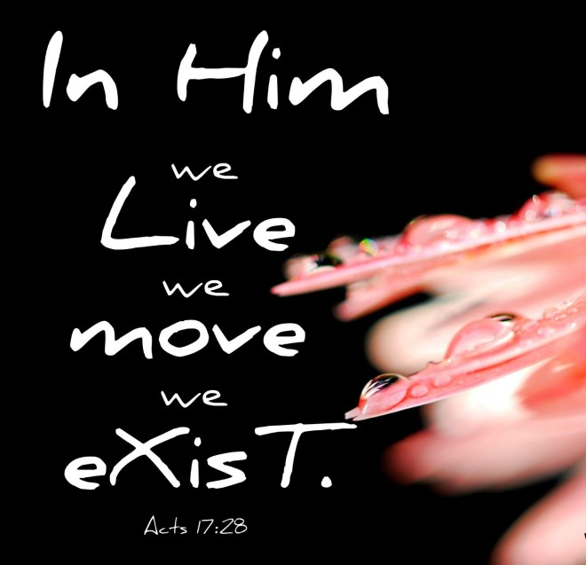 In him we live we move we exist